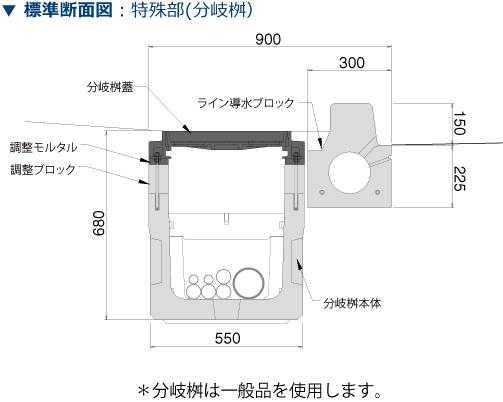 D.D.BOX Pleon製品構成